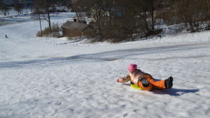Ett barn ligger på en pulka och åker nerför en snötäckt backe.