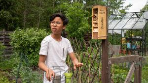 Barn står i trädgård och tittar på brun låda där det står Hotell Insecto.
