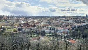 Vy över staden Vilnius äldsta kvarter från De tre korsens kulle i Kalnų-parken.