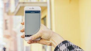 En hand håller i en telefon med applikationen Instagram öppen.