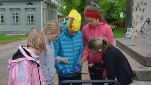 Olivia Pettersson, Rebecka Skog, Ellen Hyvönen, Emilia Fast och Malin Skreslett är på stjärnjakt i Ekenäs.