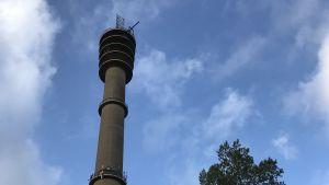 Tornet fotograferat nerifrån mot blå himmel.