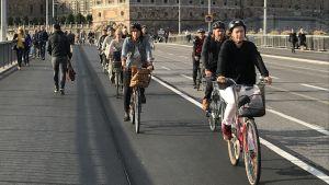 Cyklister på cykelleden intill det Kungliga slottet i Stockholm.