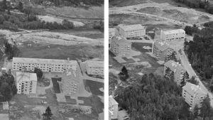 Kuvapari: Kerrostaloja rakentuvassa Roihuvuoressa v.1958: Keijukaistenpolku 4, 6, 8, 3, 5 ja 7  ja Satumaanpolku 3, 5 ja 7 sekä Keijukaistenpolku 1, 3 ja 4. Ilmakuva.
