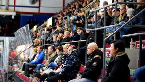 Publik på ishockeymatch.