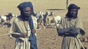 Tuareger i Mali 1974.