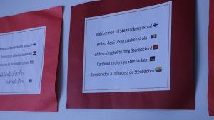 """Skyltar på nio språk med texten """"välkommen till Stenbackens skola""""."""
