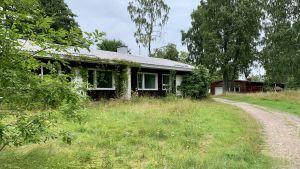 Ett fallfärdigt hus byggt i brunt trä. En del av huset är inväxt, och runt huset finns massvis gröna växter.