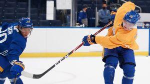 Arttu Ruotsalainen (i gult) som dominerade i Ilves under hösten försöker knipa en plats i Buffalo Sabres.