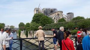 Tusentals besökare vallfärdade till Notre-Dame för att på nära håll se henne utan tak.
