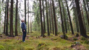 Stefan Härus i Hammars-Gammelbacka-skogen