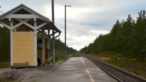 En hållplats vid en järnväg. Järnvägen är omringad av skog.