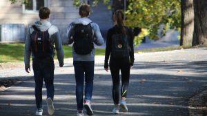 Tre ungdomar går på asfalterad väg.
