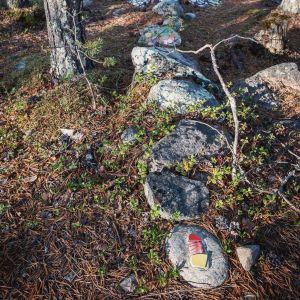 Värikkäitä mosaaikinpaloja kiinnitettynä kiviin metsässä