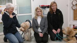 Annika Alopeus, Nona Borgström och Mia Boivie poserar med terapihundarna Cooper och Hugo
