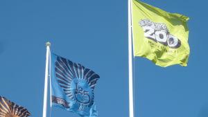 Högholmen flaggar med sin egen logo samt med logon för djurparkens 125-årsjubileum.