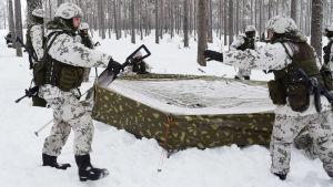 Beväringar sätter upp ett militärtält där de ska övernatta i Galoppskolgen i Baggby, Raseborg.
