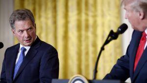 Sauli Niinistö och Donald Trump tittar mot varandra. Ledarna talar vid varsitt podium.