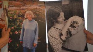 Tove Jansson fotografier visas upp på Almska gården