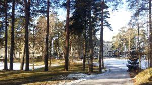 En snöig väg leder mot mentalvårds- och missbrukarhemmet Esperi Hoitokoti Rehabia, en ljusgul byggnad i tre våningar.