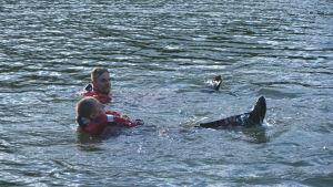 Två män flyter på vattnet.