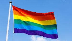 En flagga med regnbågsfärger vajar i vinden.