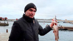 en man står vid en hamn och håller i en död filead gädda