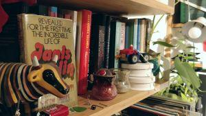 En stökig bokhylla med böcker, porslinsfigurer, smycken, värmeljus lego och krukväxter.