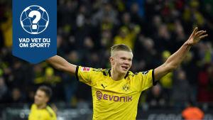 Erling Braut Håland firar mål i Borussia Dortmund (quiz).