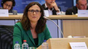 Blivande kommissionären Cecilia Malmström hörs i EU-parlamentets handelsutskott.