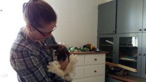 minna lindeberg med kanin