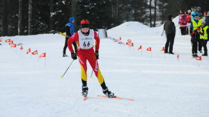 En skidare åker fristil.