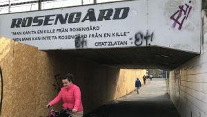"Zlatans citat i Rosengård: ""Man kan ta en kille från Rosengård, men man kan inte ta Rosengård från en kille"""