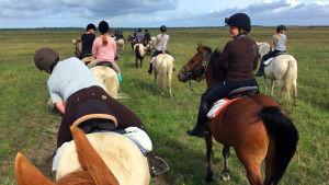 Ylen ratsastajia hevosineen.