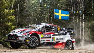 Kalle Rovanperä kör bil i de svenska skogarna.