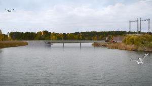 Modell över Tyska holmens bro