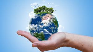 Jorden i miniatyr  i en hand.  Man ser skog och moln och fåglar som flyger ovanför jordklotet-