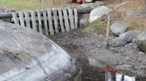 Lågvatten tömmer grunda havsvikar.