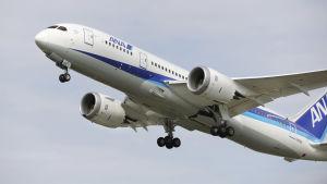 All Nippon Airways flygplan, en Boeing 787.