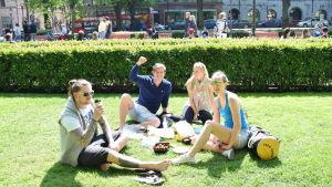 Sami, Luigi, Maija och Emma på picnic före guldmatchen