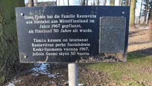 Skylt vid den finska granen som planterades vid jägarnas minnesmärke