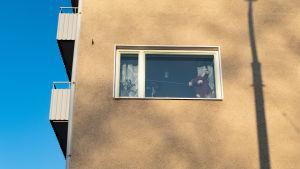 Pehmolelu-nalle kerrostaloasunnon ikkunassa. 3.4. Hermanni, Helsinki.