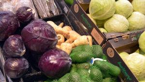 Säsongens grönsaker mitt i vintern är kål, palsternacka och avocado.