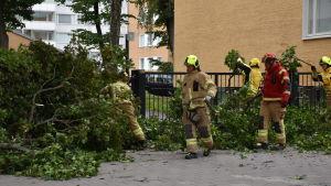 Brandmän i full mundering röjer kvistar på trottoar.
