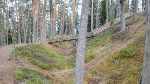 framför en smal stig, bakom trappa och gångbro i skogsbacke