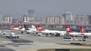 Turkish Airlines -flyg vid flygplatsen i Istanbul