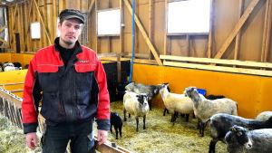 Fårbonden Jonas Nord framför inhägnad med får