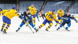 Svenska och finländska spelare jagar puck.
