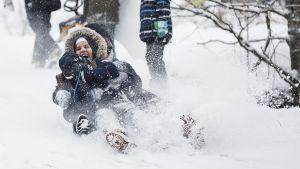 Snön yr om ett glatt barn som åker pulka.