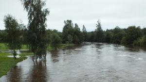 Mycket vatten i Tjöck å